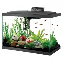 "Aqueon 20 Gallon LED Aquarium Kit Black 24.2"" x 12.5"" x 19.5"""
