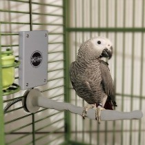 K&H Pet Products Snuggle Up Bird Warmer Gray